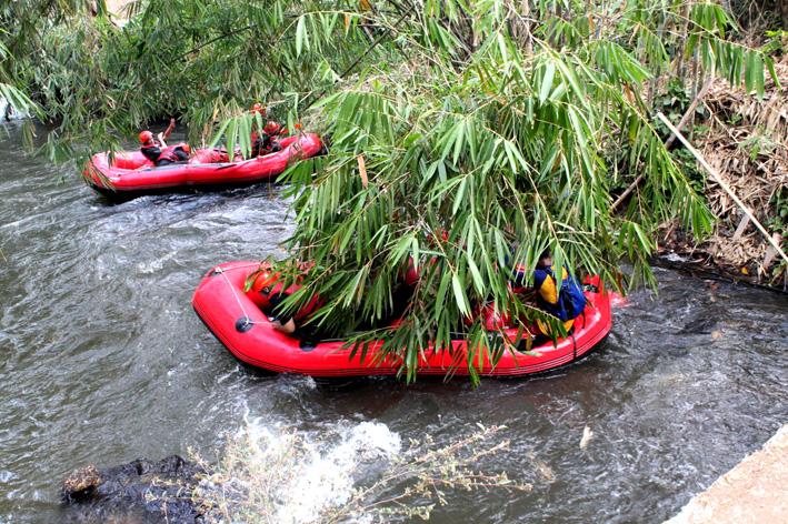 Terjebak di kerumunan bambu